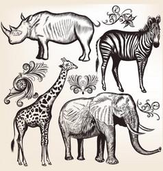 collection savanna animals vector image