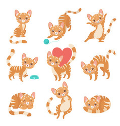 Cute funny red cat character in various poses and vector