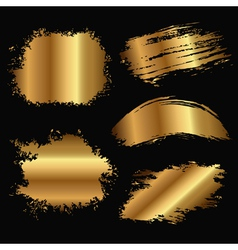 gold stain vector image
