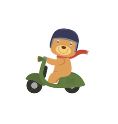 happy little bear riding a green scooter vector image