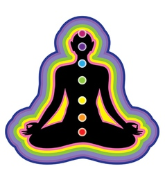 meditation location of the chakras on the human bo vector image