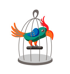 Parrot in cage flat character isolated vector