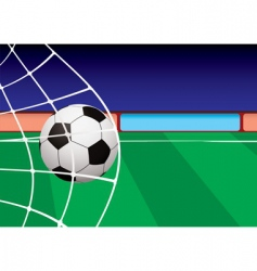 football pitch goal vector image vector image