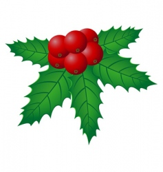 Christmas holly illustration vector image vector image