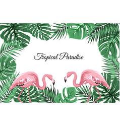tropical border frame green leaves pink flamingos vector image vector image