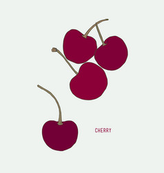 Cherry drawing set isolated hand drawn berry vector