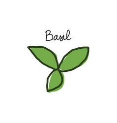 basil leaves hand drawn cartoon doodle vector image
