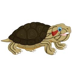 Cartoon baby cute turtle vector