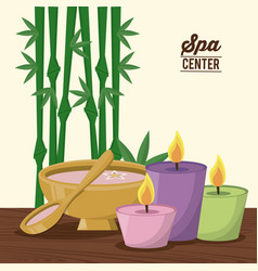 Color poster of spa center with bamboo plant and vector