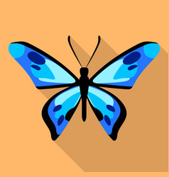 dotted blue butterfly icon flat style vector image