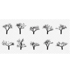 naked trees silhouettes set hand drawn isolated vector image