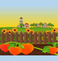 pumpkin harvest garden background vector image