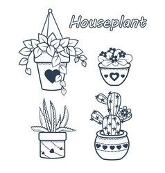 Set flowers houseplant vector