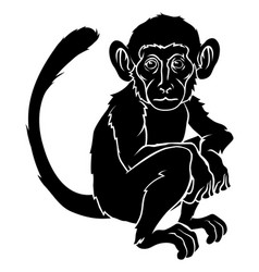 stylised monkey vector image