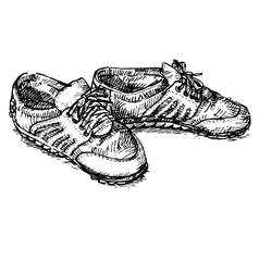 Pair of shoe vector image vector image