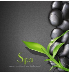 background of a spa with stones vector image vector image