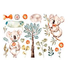 bacute koala watercolor nursery cartoon vector image