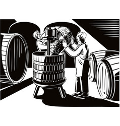 Cellar with big barrels a young man pays ripe vector
