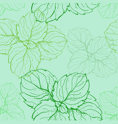 hand drawn seamless pattern with mint leaves vector image