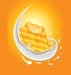 Milk splash with honey combs vector