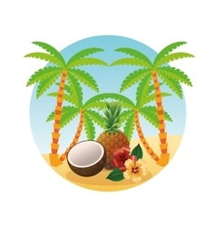 Summer design Holidays icon Colorfull vector