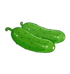 Couple cucumber vector image