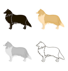 collie icon in cartoon style for web vector image