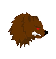 Angry bear aggressive Grizzlies with grin Wild vector image
