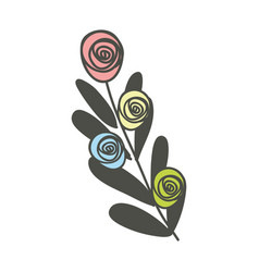 color rose with leaves branch plant vector image