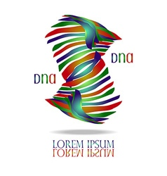DNA Logo vector image