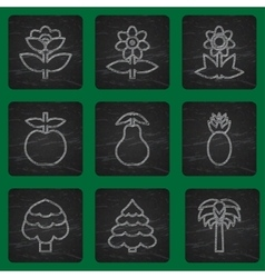 Set of simple flat icons flowers trees and fruits vector