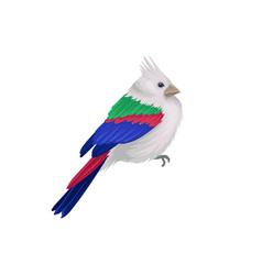 Small exotic bird with crest and colorful feathers vector