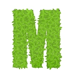 Uppecase letter M consisting of green leaves vector image