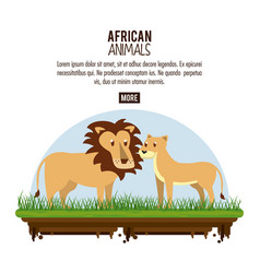 african animals cartoons vector image