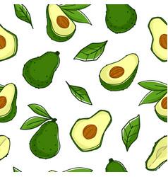 Avocado plant organic ingredient fruit pattern vector