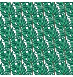Green pine pattern on transparent background vector image