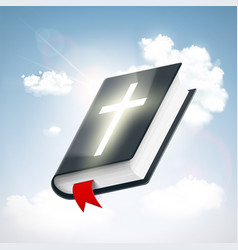 Holy bible in the sky vector