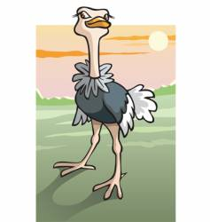 cartoon ostrich in Savanna vector image vector image