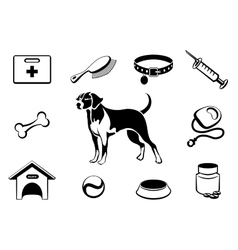 Dog vet clinic icons vector image