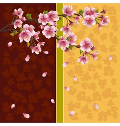 Oriental background sakura Japanese cherry tree vector image vector image