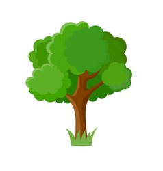 decorative cartoon tree vector image