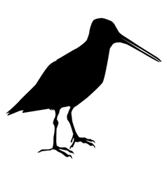 silhouette of snipe vector image