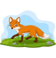 cartoon happy fox walking in grass vector image