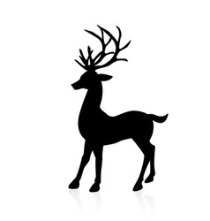 deer icon isolated vector image