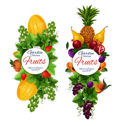 Fruins harvest icons garden natural vegan food vector