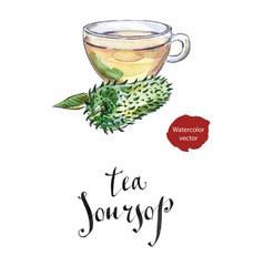 glass cup of soursop ceilona tea vector image
