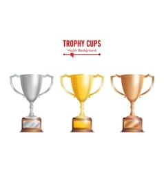 Trophy Cups Set Golden Bronze Silver Colours vector image