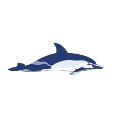 Dolphin on a white background vector image vector image