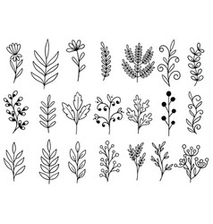 0097 hand drawn flowers doodle vector
