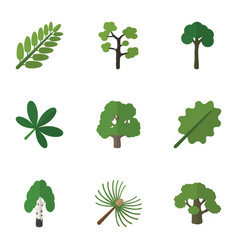 Flat icon bio set of maple evergreen leaves and vector